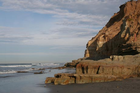 Picture of Dog Beach in Del Mar California