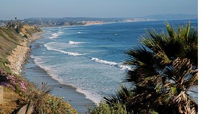 San Diego Asap Encinitas Beach