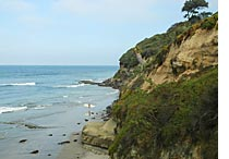 San Diego ASAP | Encinitas Beach